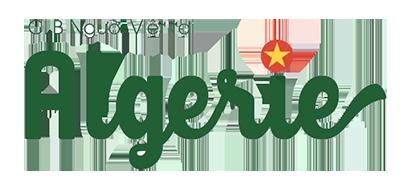 Đại sứ quán Việt Nam ở Algeria logo
