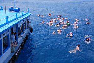 Du khách vui vẻ tắm biển trên chuyến hành trình tham quan 4 đảo.